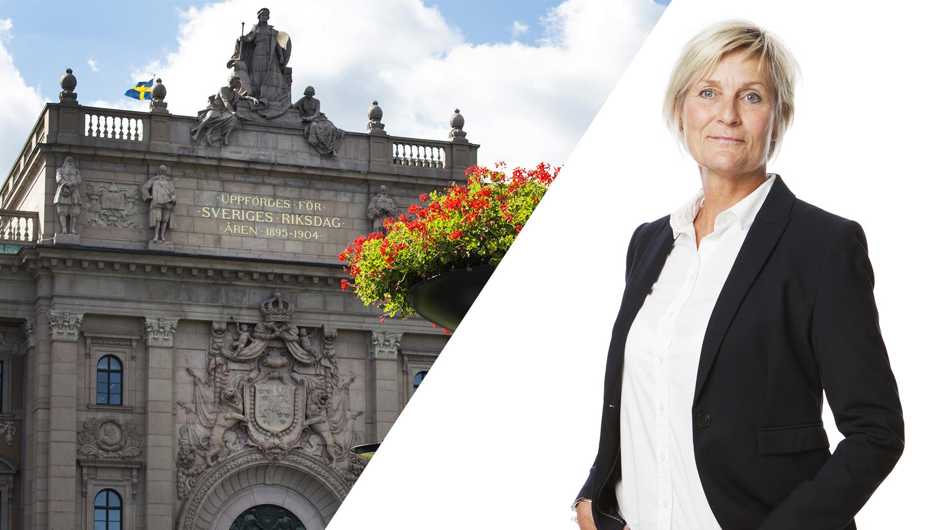 Elisabeth Högberg från GFO på besök i riksdagen för att prata om placerrade barns och ungas trygghet.